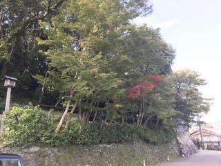 蔵王堂周辺1031.JPG