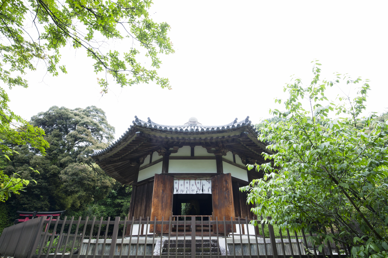 榮山寺創建1300年『ご住職に案内いただく、本堂・国宝八角円堂(通常非公開)』