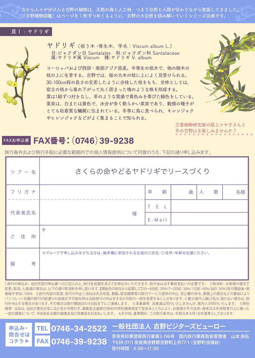 〈吉野植物図鑑〉さくらの命やどるヤドリギでリースづくり